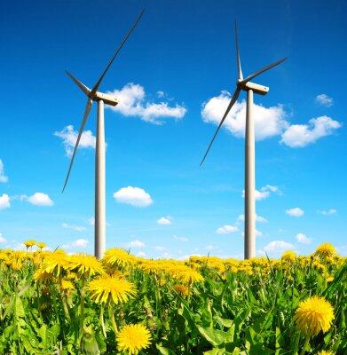 Image Champ de pissenlits avec des éoliennes. Énergie propre.