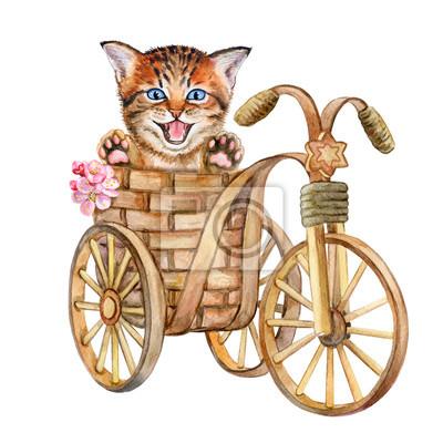 Chaton mignon dans un panier isolé sur fond blanc. Chat en vélo. Aquarelle. Illustré. Fait main. Modèle.