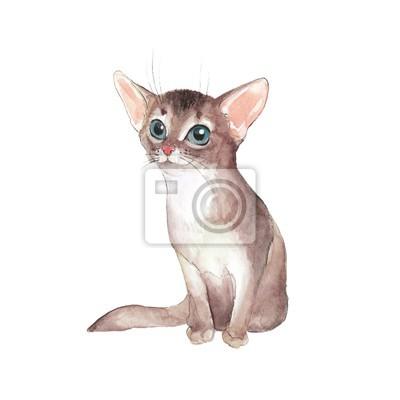 Chaton mignon, isolé sur blanc. Chat. Illustration aquarelle