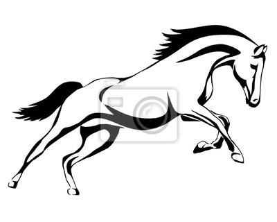 Image: Cheval de course à queue noire sur fond blanc. graphique vectoriel.