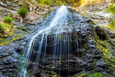 Image Chute d'eau dans la forêt sauvage