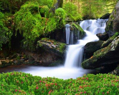 Image Chute d'eau dans le parc national de Sumava-République tchèque