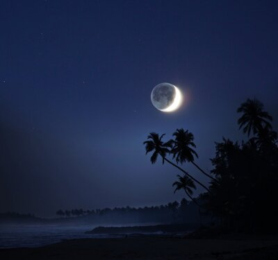 Image Clair de lune