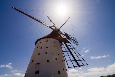 Image Classique, vendange, éolienne, bâtiment