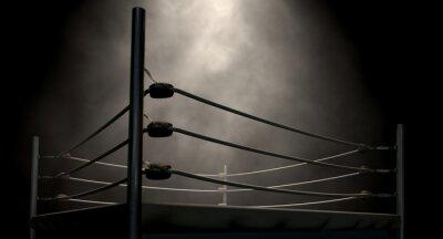 Image Classique Vintage Ring de boxe