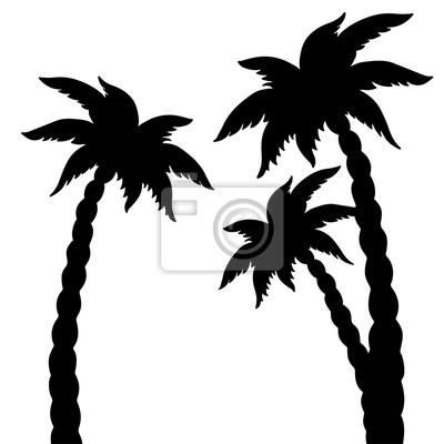 Coconut, paume, Arbres, noir, silhouettes, isolé, blanc, fond