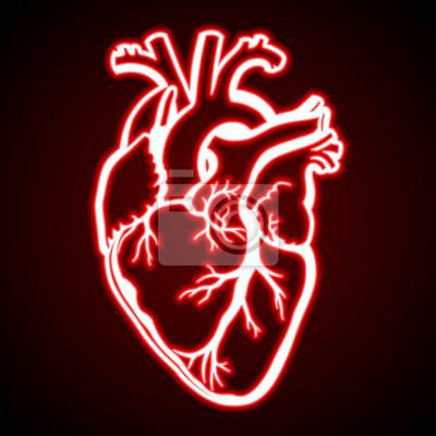 Coeur Humain Rouge Rougeoyant Peintures Murales Tableaux Rythme Nubes Cardiogramme Myloview Fr