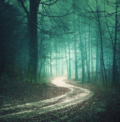 Image Color Magic automne route forestière. Dreamy Bllue couleur verte campagne brumeuse forêt arbre à remontage fond de la route. Fantastique bois coloré. Effet de filtre couleur utilisée.