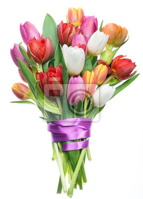Image Colorful bouquet of tulips on white background.