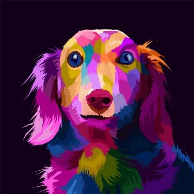 Image colorful dog pop art portrait vector