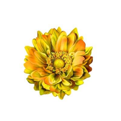 Image Colorful fleur Mona Lisa, Spring bloom