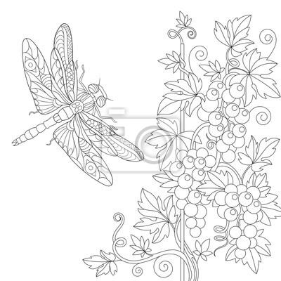 Coloriage de la libellule et de la vigne. dessin déquisse ...