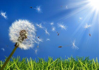 Image concept de l'allergie au printemps - exclusif