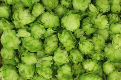 Image cônes de houblon vert abstrait