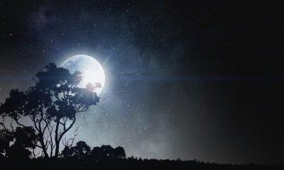 Image Contexte de nuit d'été