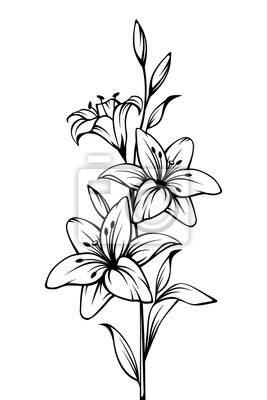 Image Contour De Vecteur Noir Et Blanc Dessin De Fleurs De Lys