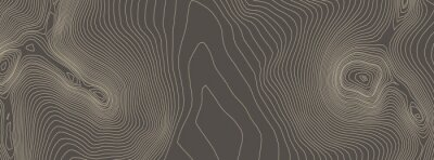 Image Contours vector topography. Geographic mountain topography vector illustration. Topographic pattern texture. Elevation graphic contour height lines.