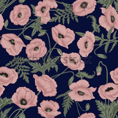 Image Coquelicots. Arrière-plan transparent de vecteur dans le style vintage. Modèle de la plante. Dessin botanique.
