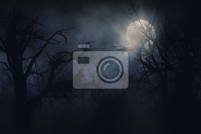 corbeaux de nuit