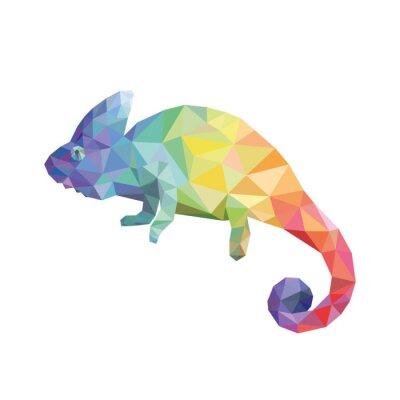Image couleur caméléon