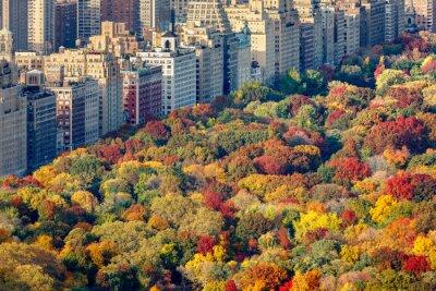 Image Couleurs d'automne brillants de Central Park feuillage en fin de journée. Vue aérienne vers Central Park West. Upper West Side, Manhattan, New York City