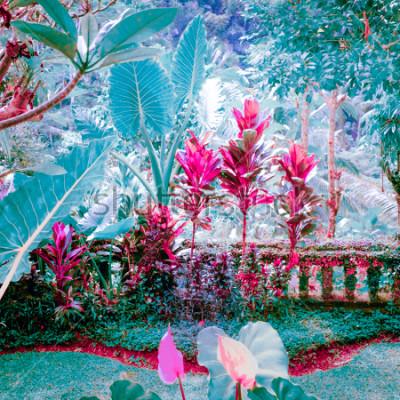 Image Couleurs surréalistes de jardin tropical fantastique avec des plantes et des fleurs incroyables