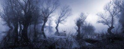 Image Creepy, paysage, projection, brumeux, sombre, marécage, automne.