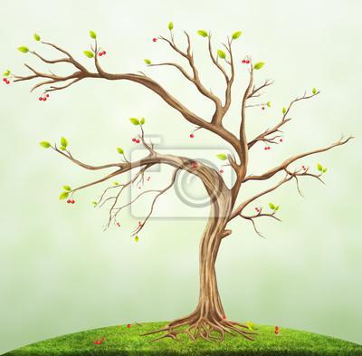 D'Illustrations - été, cerise, arbre
