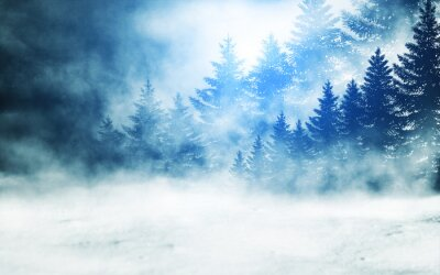 Image Dark winter forest background at night. Snow, fog, moonlight. Neon figure in the center