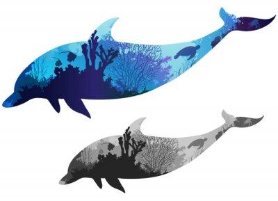 Image dauphin