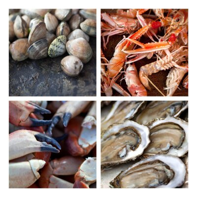 Image De Coquillages des fruits de mer marée Pêche