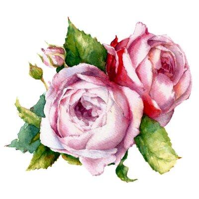Image des roses