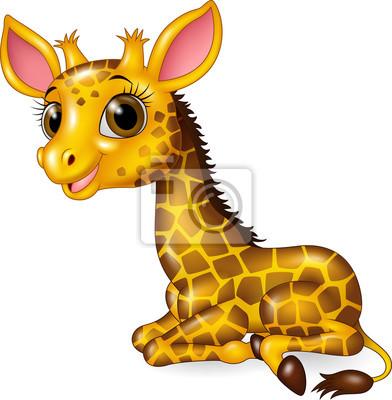 Dessin Anime Drole Bebe Girafe Seance Isole Blanc Fond Peintures Murales Tableaux Mascotte Cou Bd Myloview Fr