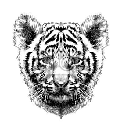 Dessin tete de tigre noir et blanc - Image dessin tigre ...