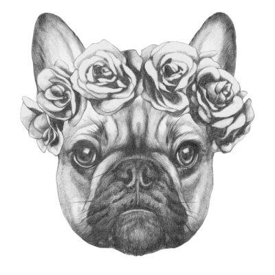 Image Dessin original du bouledogue français avec des roses. Isolé sur fond blanc