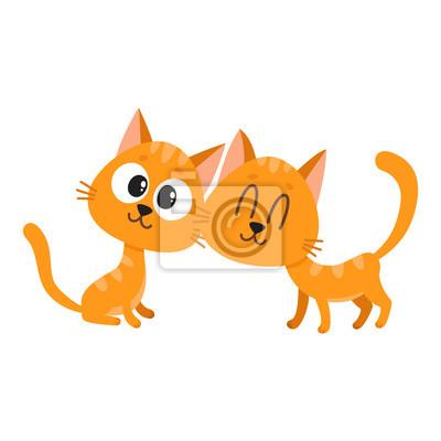 Image Deux chat mignon et drôle rouge, personnages de chaton, regardant  curieusement, intéressé