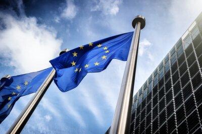 Image Drapeaux de l'Union européenne