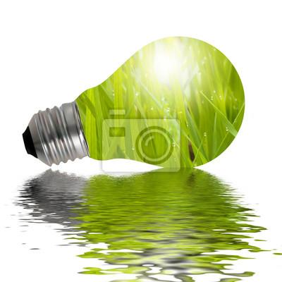 Eco lampe reflète dans l'eau