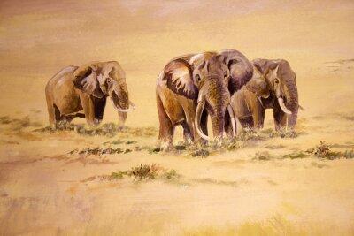 Image Éléphant d'Afrique, l'Afrique du Sud