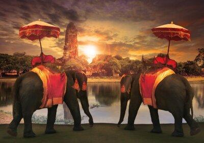 Image éléphant dressing avec Thai accessoires de tradition royaume standi