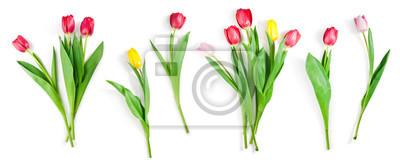 Image ensemble de fleurs de tulipe isolé sur blanc avec un tracé de détourage inclus