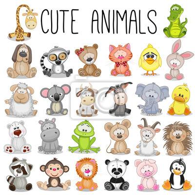 Image Ensemble, mignon, animaux