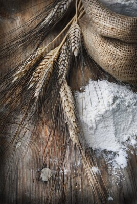 Image Épis de blé