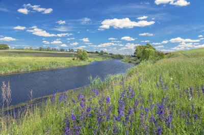 Image Été, paysage, rivière