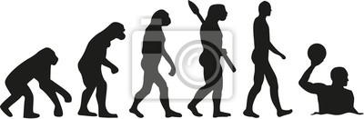 Image Evolution du water-polo