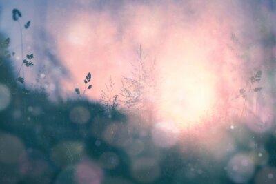 Image Fantastique coucher de soleil bokeh floue de fond prairie
