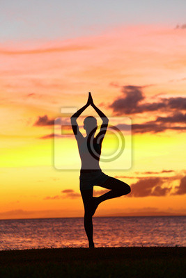 femme de formation de yoga au coucher du soleil dans l'arbre pose