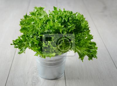 Feuille de salade dans un seau