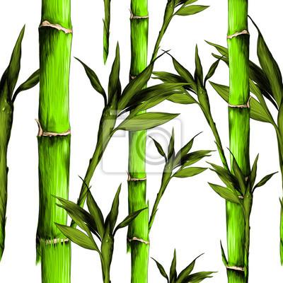 Image Feuilles Branches Tige Bambou Modèle Fleurs Texture Cadre Croquis