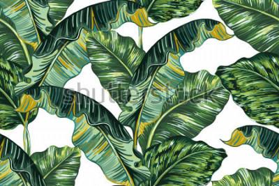 Image Feuilles de palmier tropical, fond de motif floral vectorial continue jungle feuille